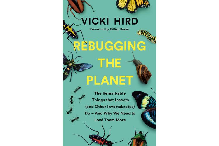 Why we should all be 'rebugging' the planet