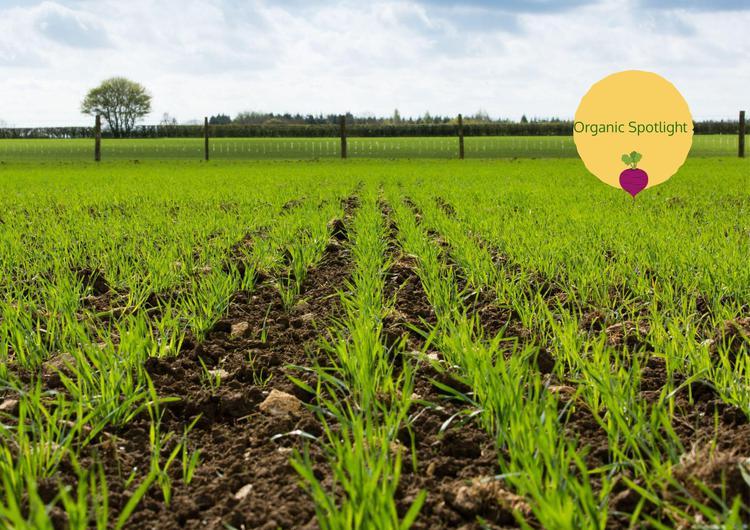 Organic Spotlight – Progressive Agriculture