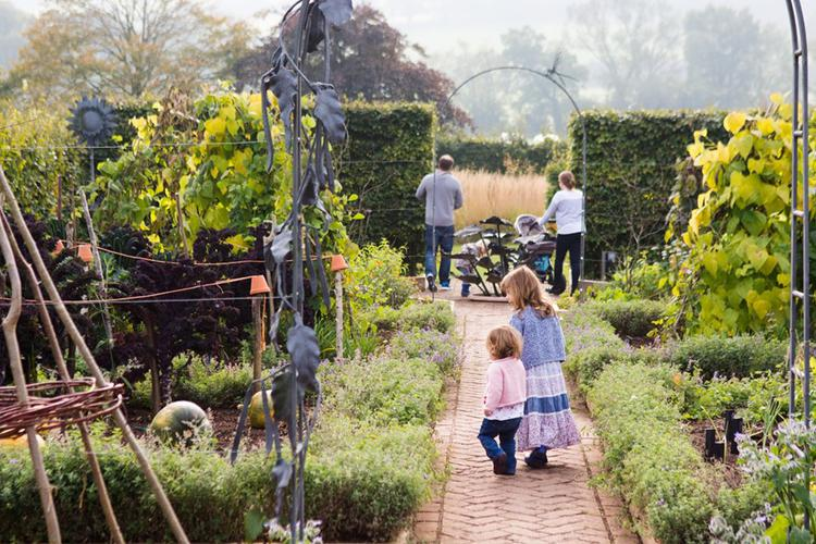Organic days out: mini-adventures for the summer holidays