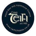 Caws Teifi Cheese