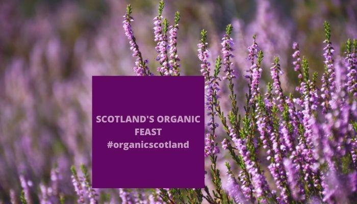 Scotland's Organic Feast - Converting to Organic